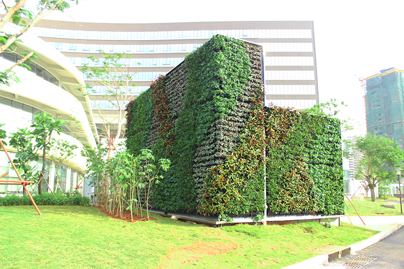 户外植物墙采用环保材料制定,不环境污染,无需打理,可根据不同的环境及